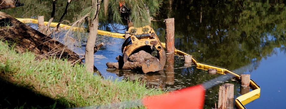 Penrith City Council Nepean River woody debris