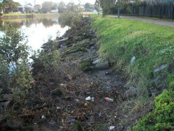 Throsby Creek