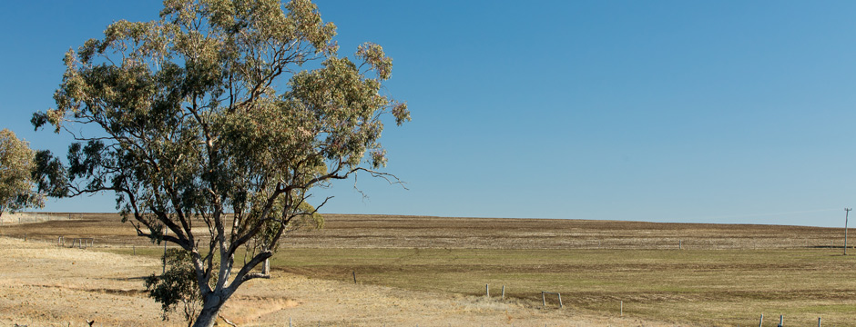 Hunter Landcare group erosion control